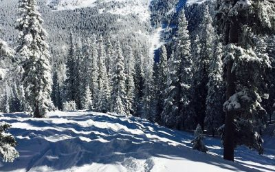 Cozy Winter/Ski Getaway Special !!!   4th night my treat!